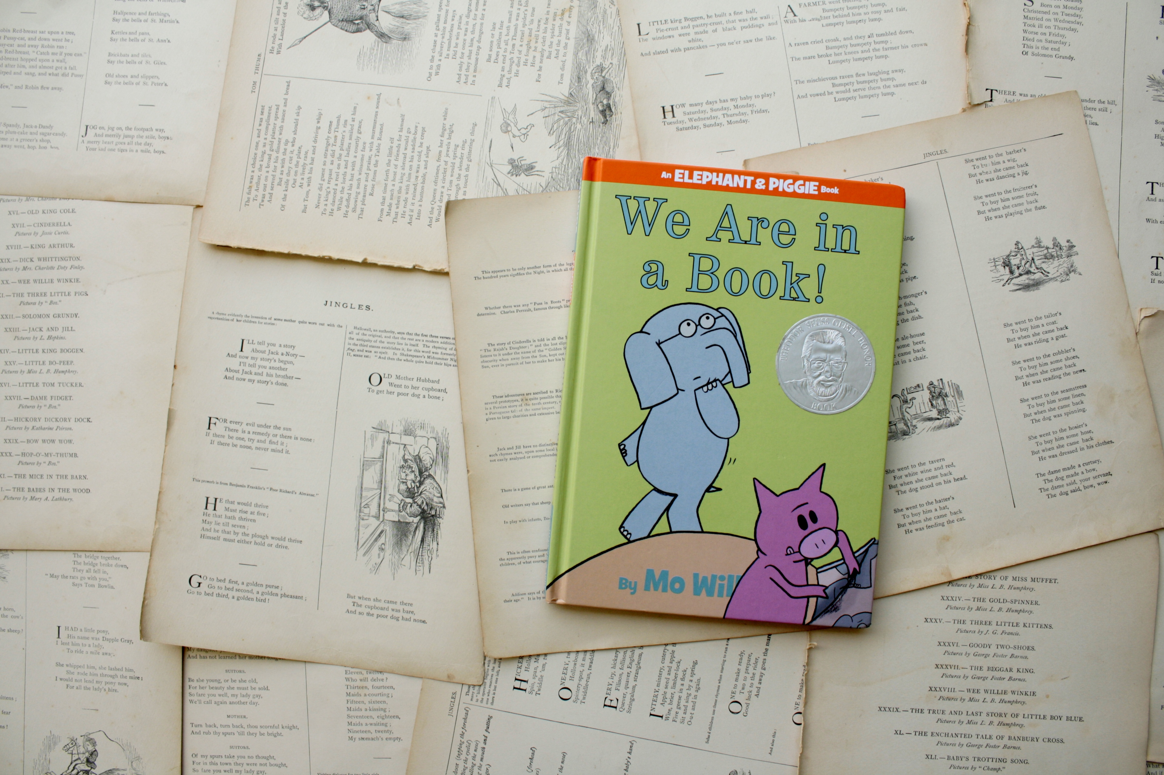 We Are in a Book! | Mo Willems