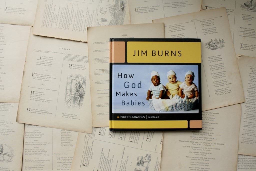 How God Makes Babies | Little Book, Big Story