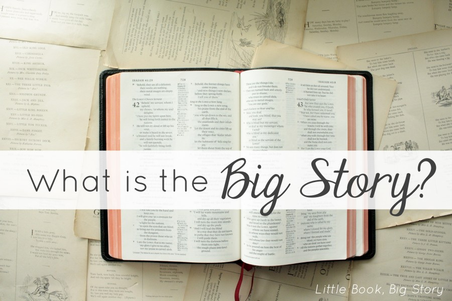 What is the Big Story? | Little Book, Big Story