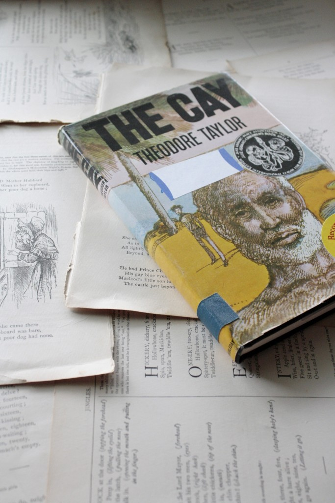 The Cay, by Theodore Taylor | Little Book, Big Story