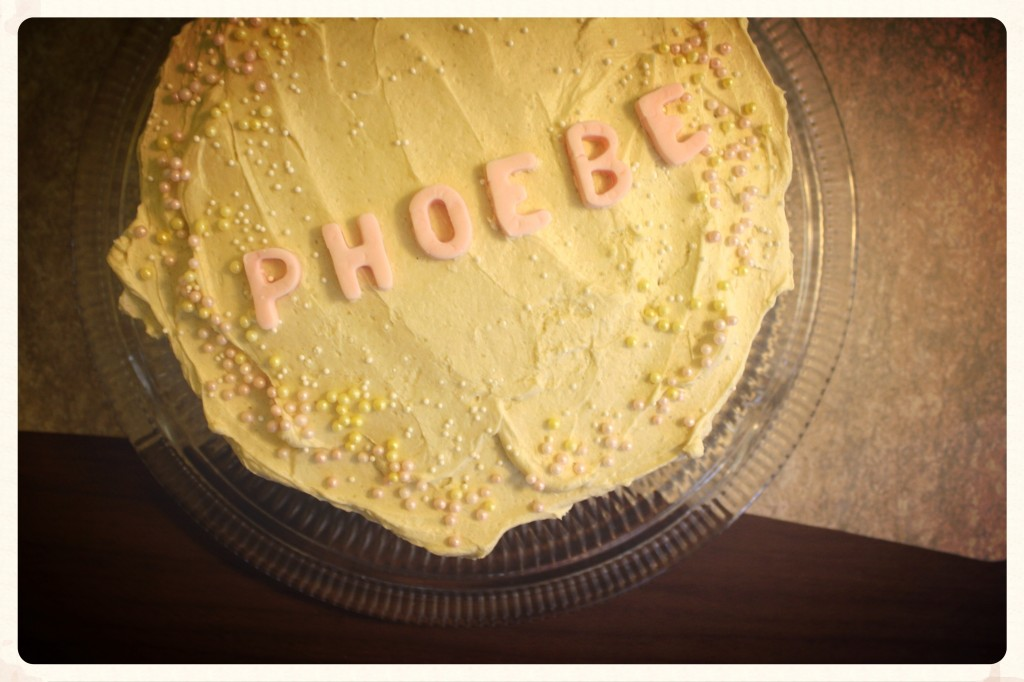 Birthday Cake | Little Book, Big Story