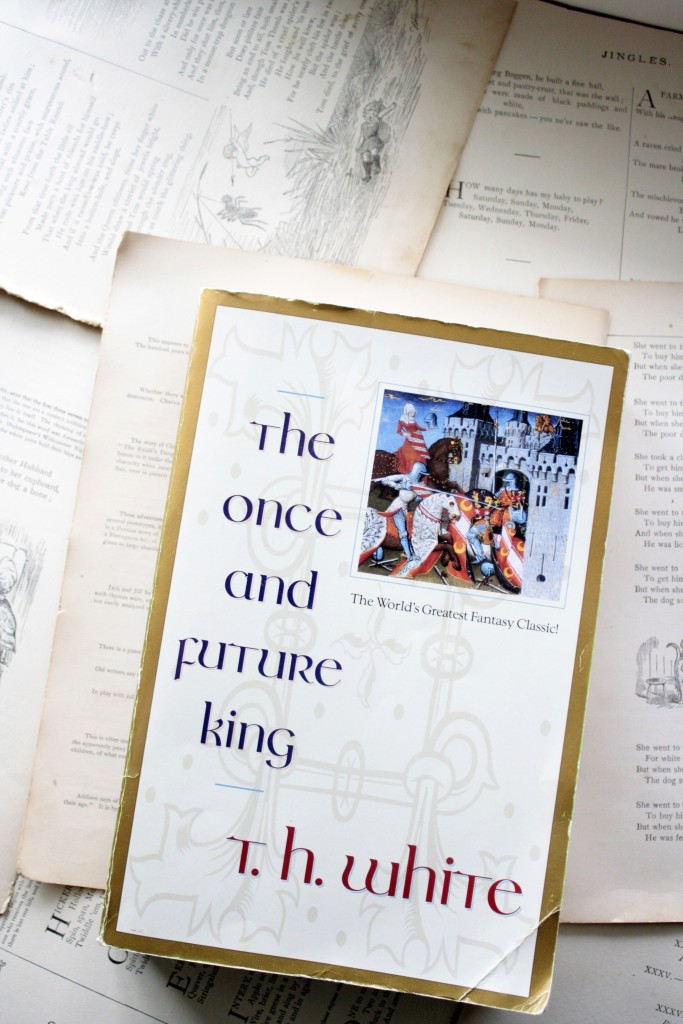 The Once and Future King | Little Book, Big Story