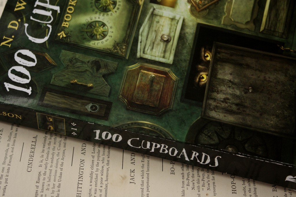 100 Cupboards | Little Book, Big Story
