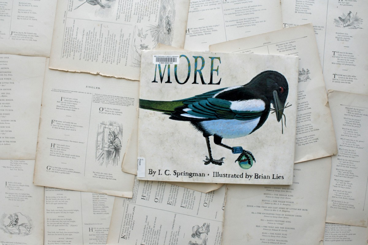 More, by IC Springman | Little Book, Big Story