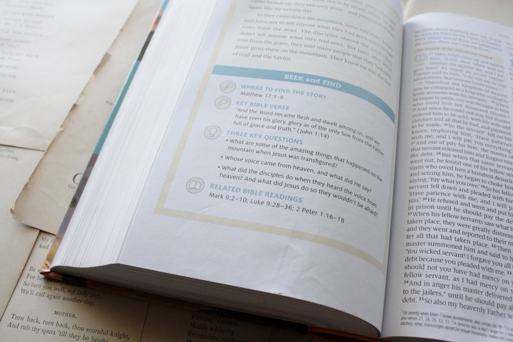 ESV Seek and Find Bible | Little Book, Big Story