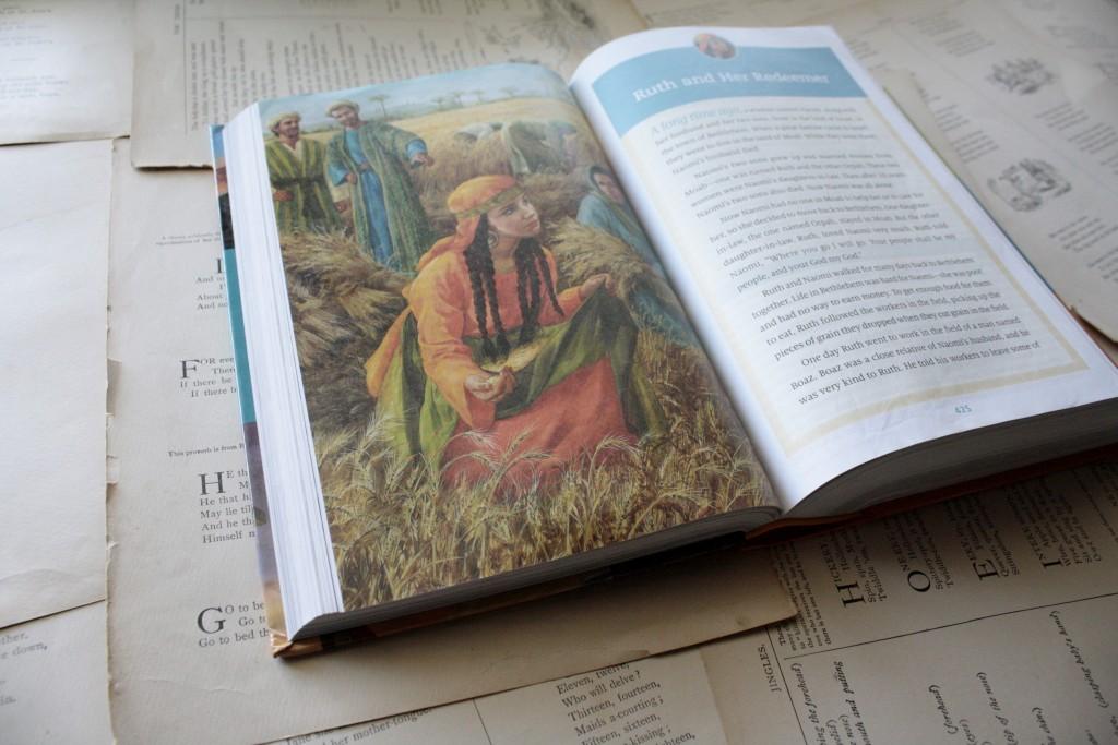 ESV Seek and Find Bible (Ruth) | Little Book, Big Story