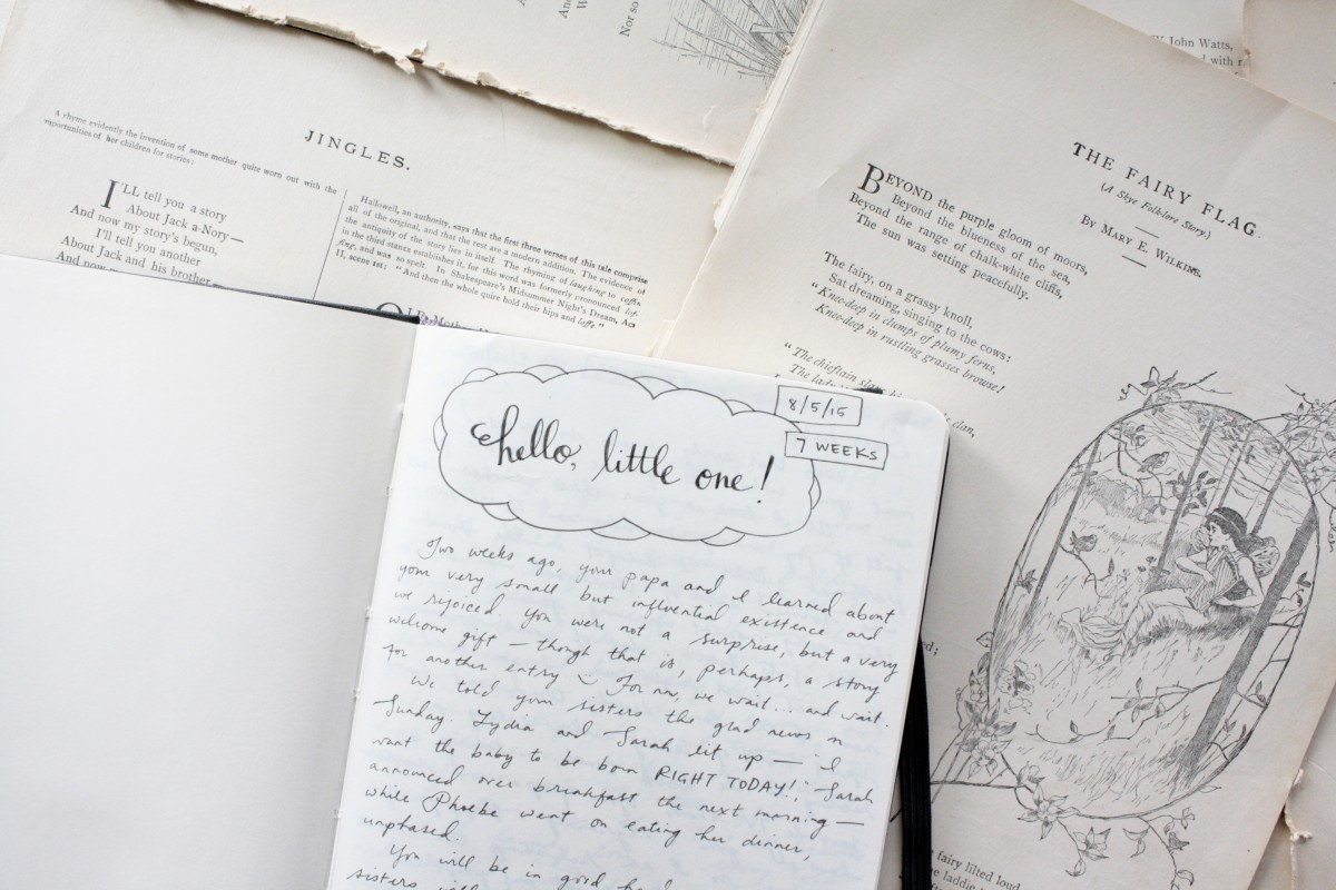 Starting a New Notebook | Little Book, Big Story