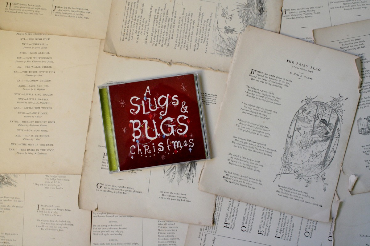 A Slugs and Bugs Christmas | Little Book, Big Story