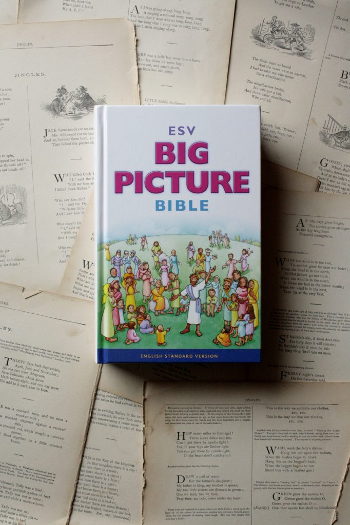 ESV Big Picture Bible | Little Book, Big Story