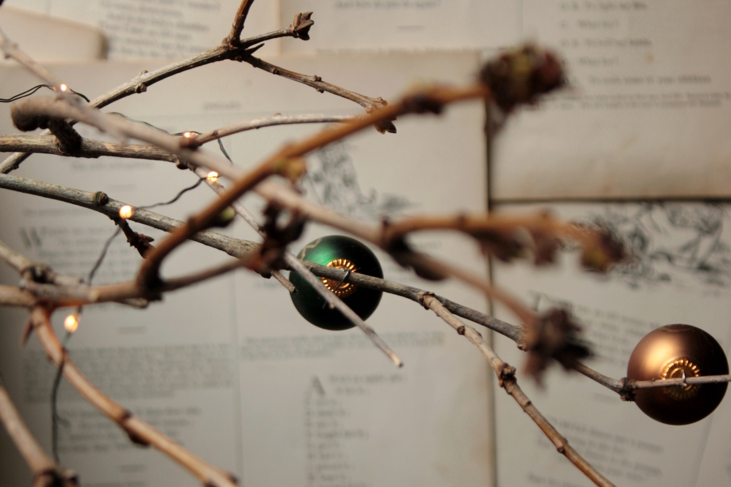 """""""In the Beginning"""" 