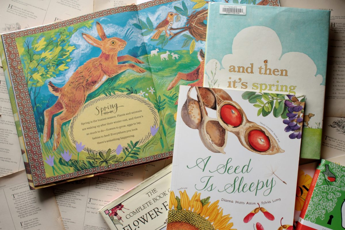 10 Lovely Books for Spring | Little Book, Big Story