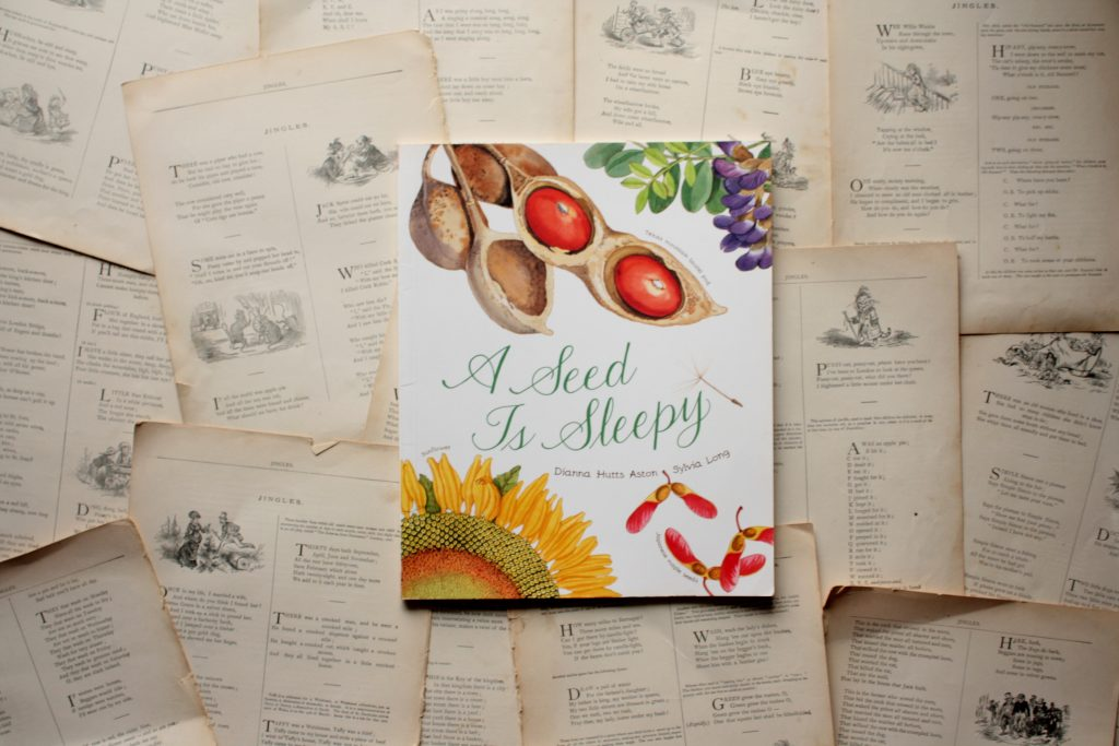A Seed is Sleepy, by Dianna Hutts Aston | Little Book, Big Story