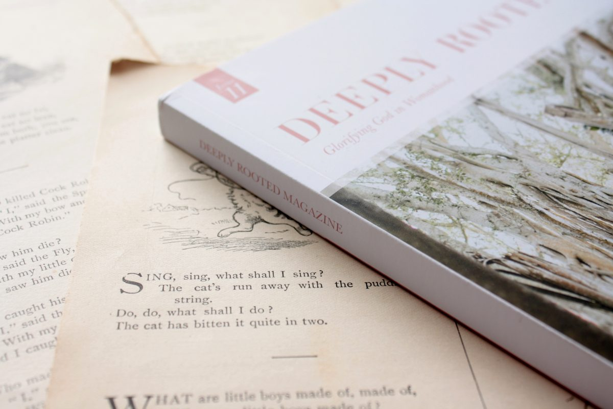 Deeply Rooted Magazine, Issue 11: Wisdom | Little Book, Big Story