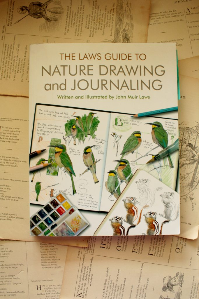 The Laws Guide to Nature Drawing and Journaling, by John Muir Laws | Little Book, Big Story