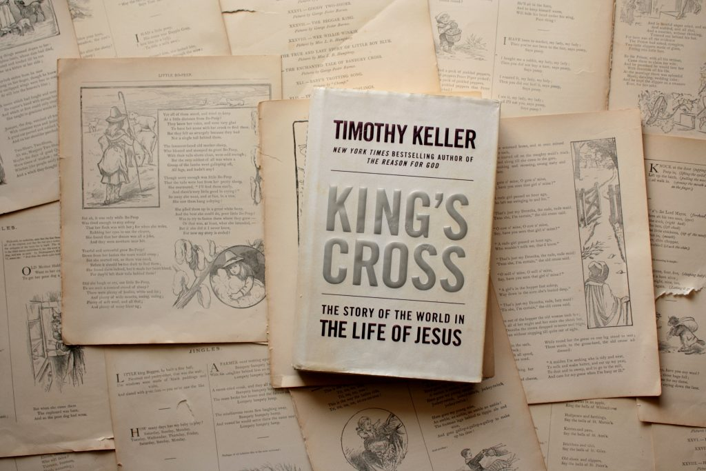King's Cross (Jesus the King), by Timothy Keller | Little Book, Big Story