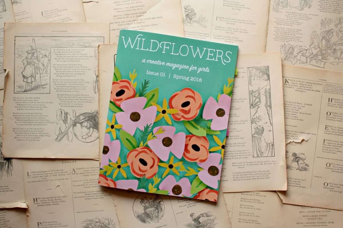Wildflowers Magazine (GIVEAWAY!)   Little Book, Big Story