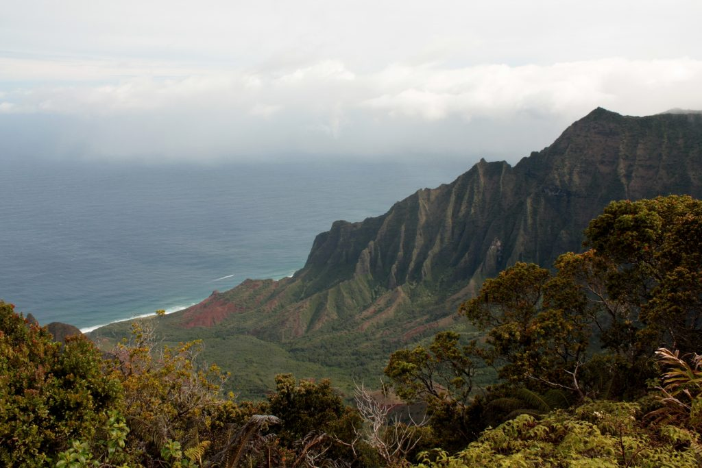One elbow of the Na Pali coast | Little Book, Big Story