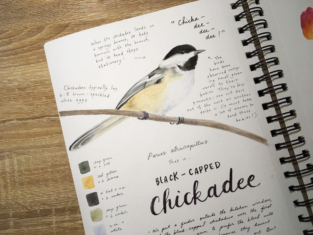 Sketchbook (Thea Rosenburg) | Little Book, Big Story