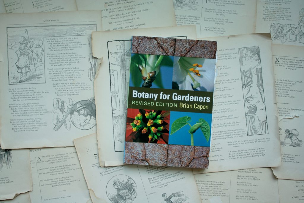 Botany for Gardners, by Brian Capon | Little Book, Big Story