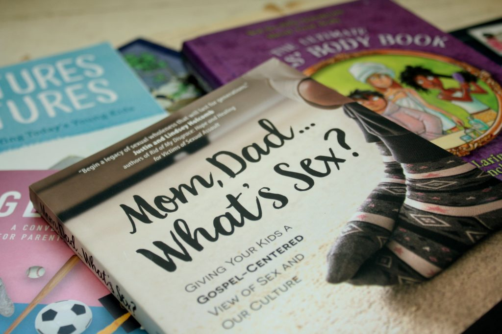 9 Christian Books About Sexuality   Little Book, Big Story