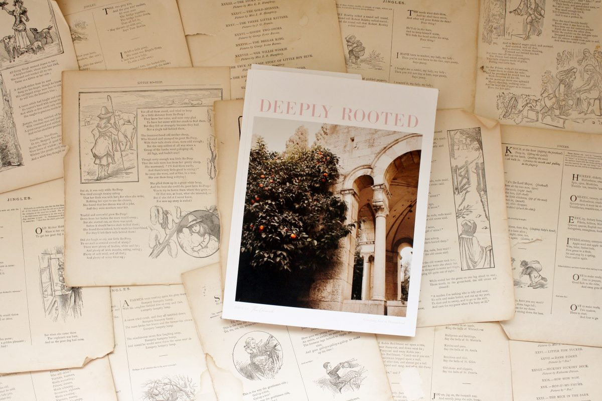 Deeply Rooted Magazine, Issue 14: The Church | Little Book, Big Story