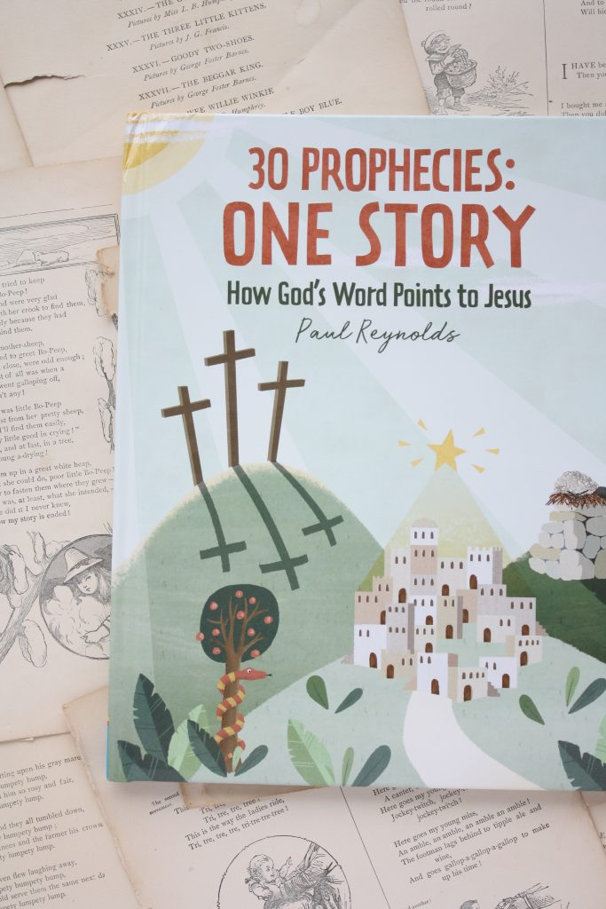 30 Prophecies: One Story, by Paul Reynolds | Little Book, Big Story