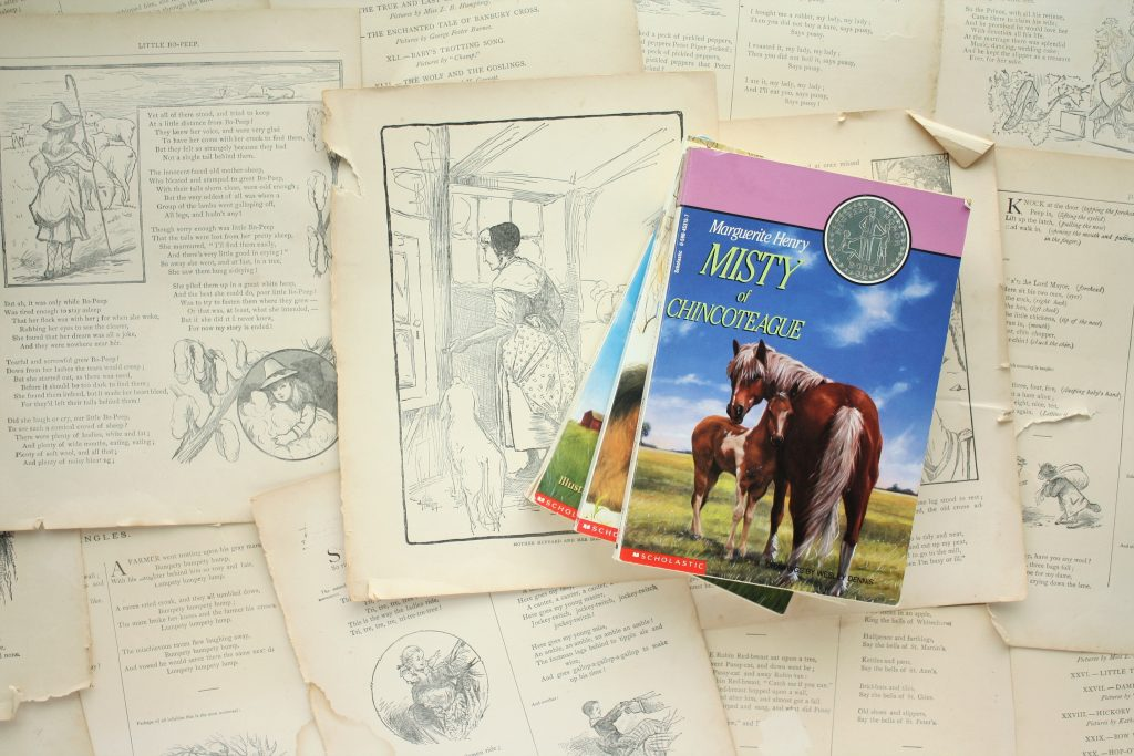 Misty of Chincoteague (Series), by Marguerite Henry | Little Book, Big Story
