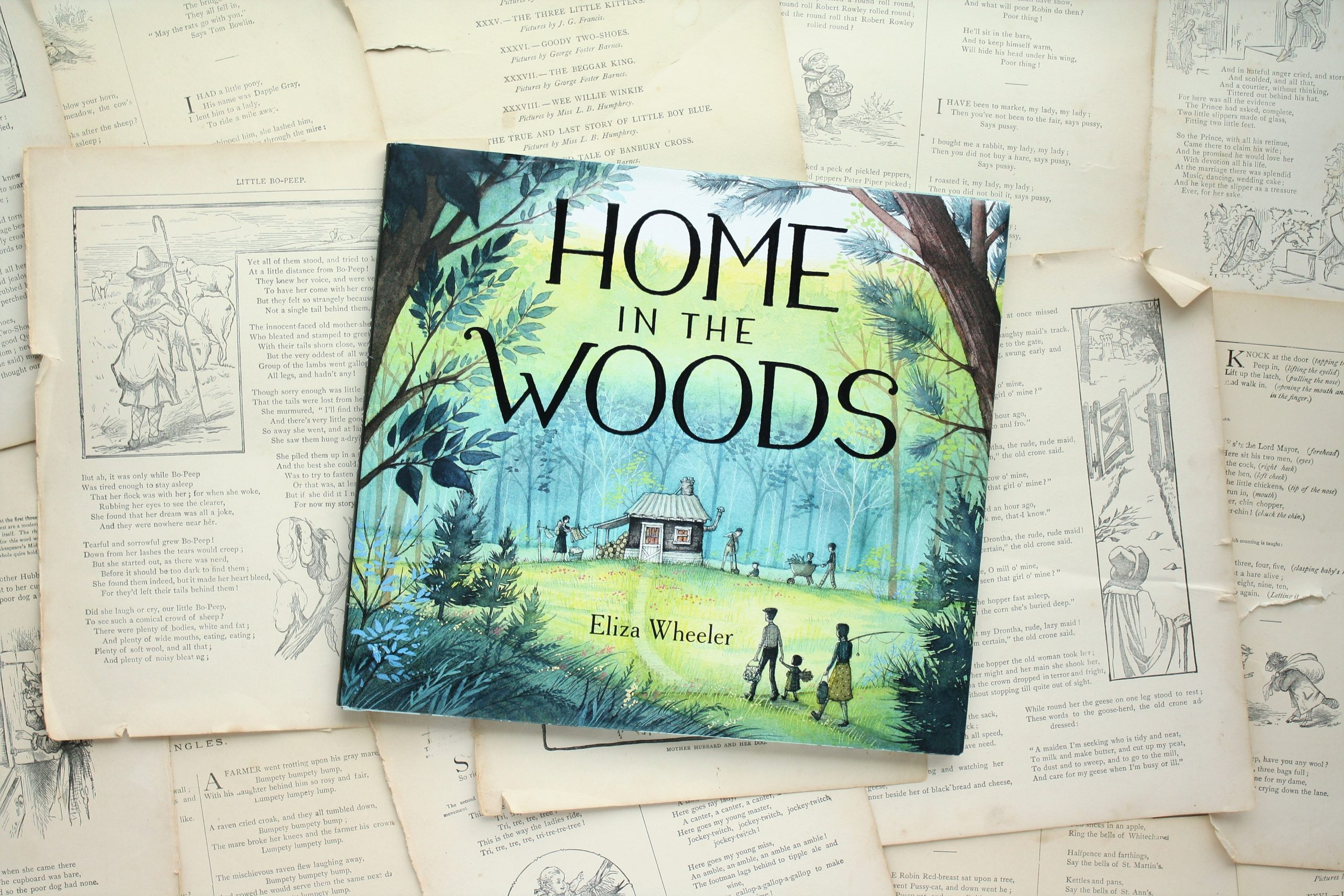 Home in the Woods | Eliza Wheeler