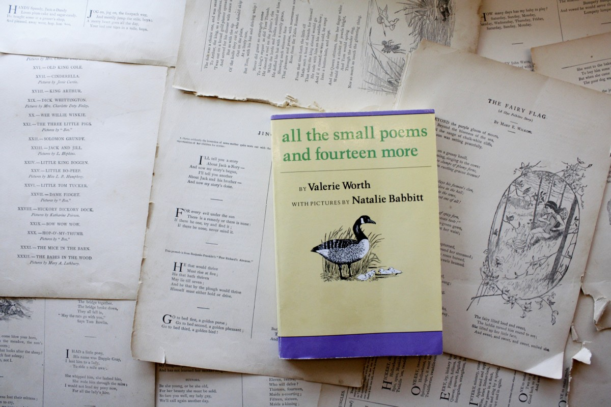 All the Small Poems, by Valerie Worth | Little Book, Big Story