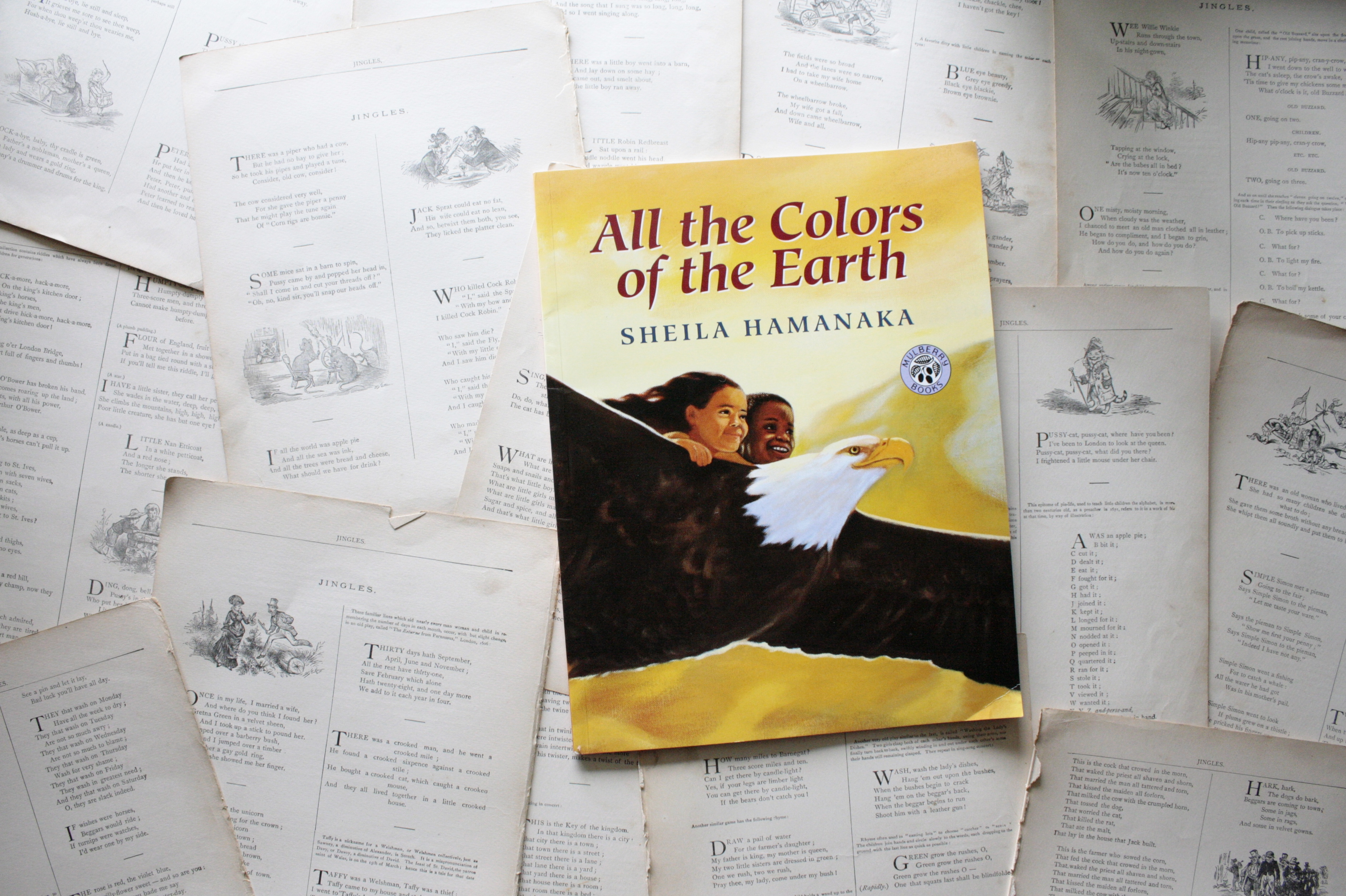 All The Colors of the Earth | Sheila Hamanaka