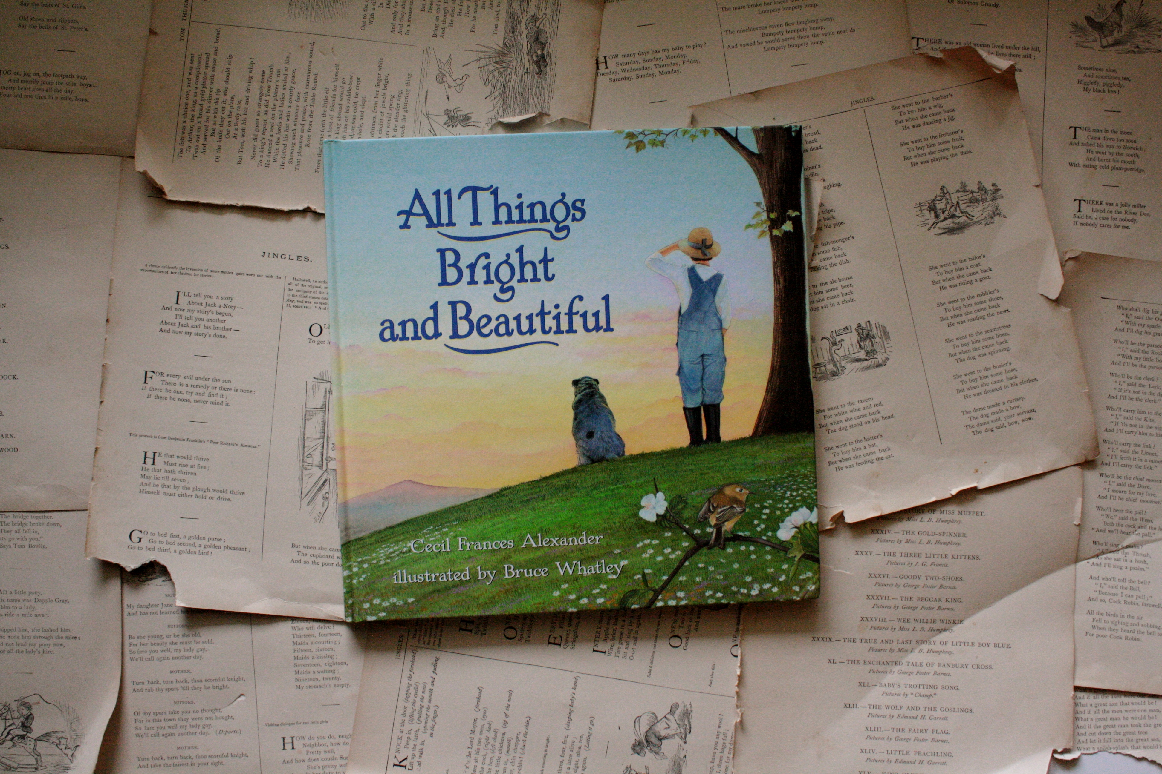 All Things Bright and Beautiful   Bruce Whatley