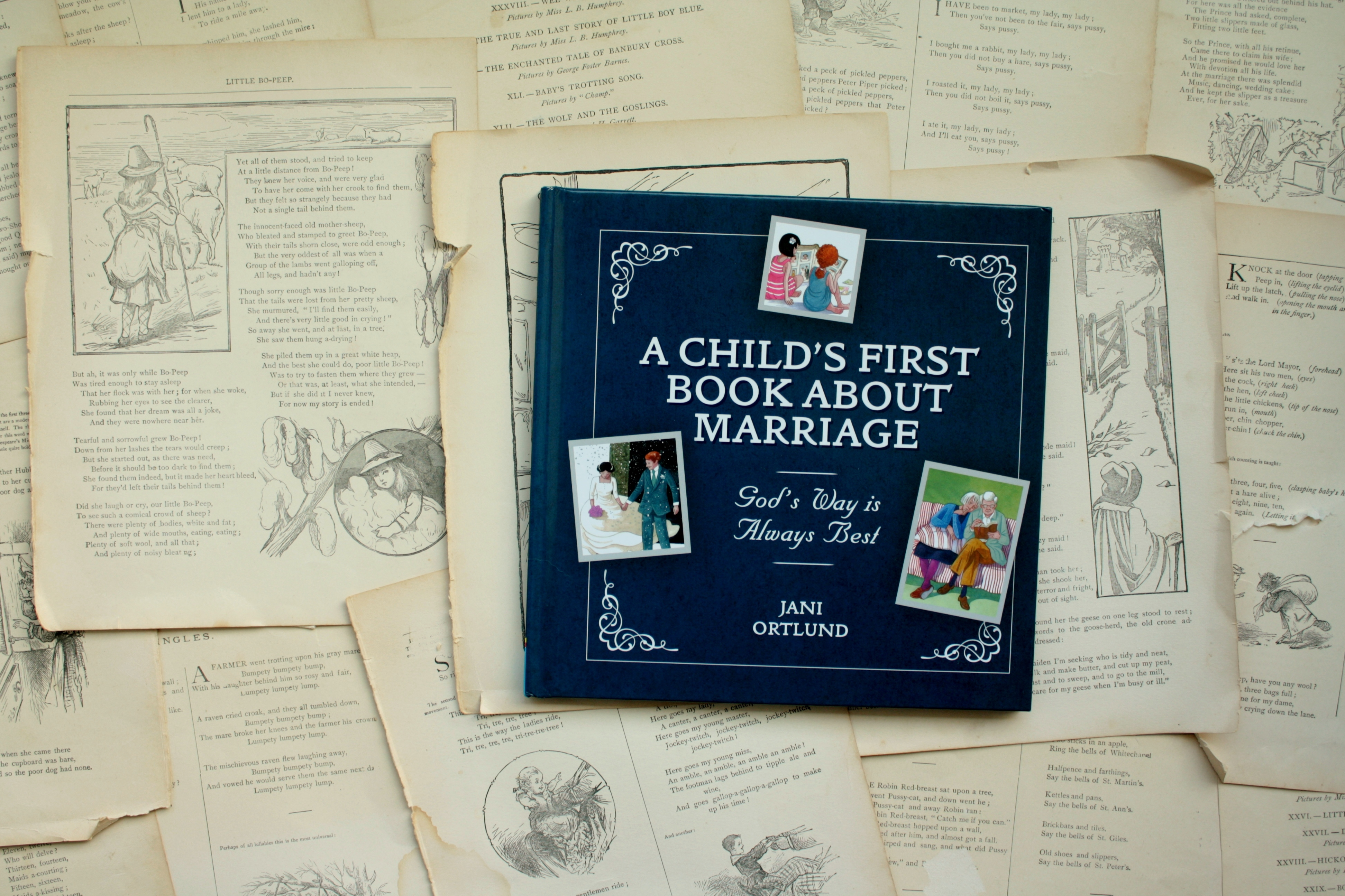 A Child's First Book About Marriage   Jani Ortlund