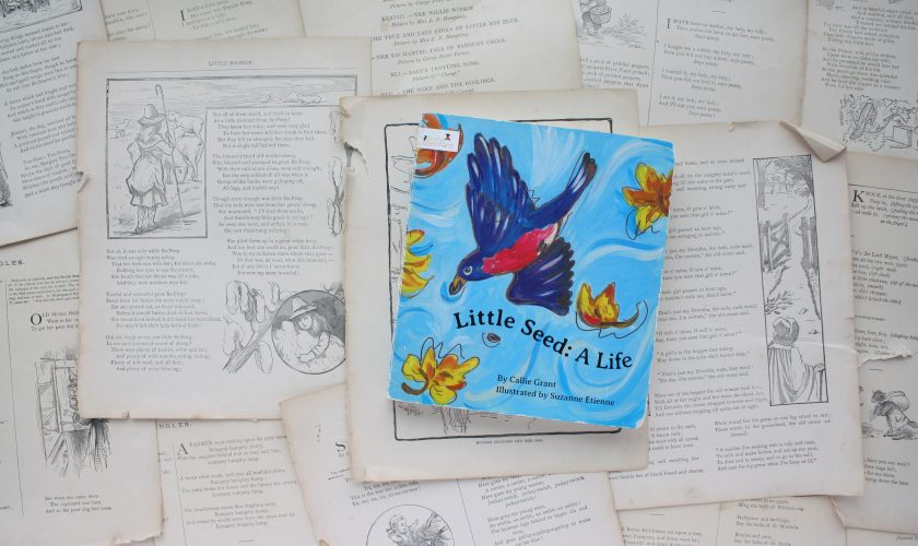 Little Seed: A Life | Callie Grant